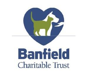 BAnfield image
